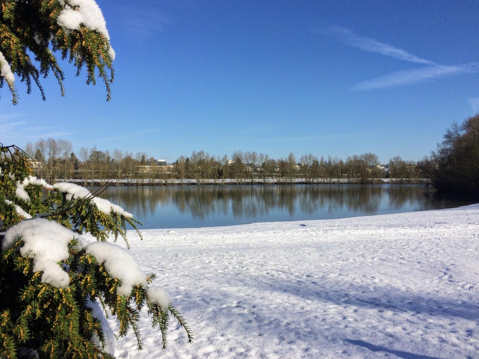 Île Charlemagne sous la neige
